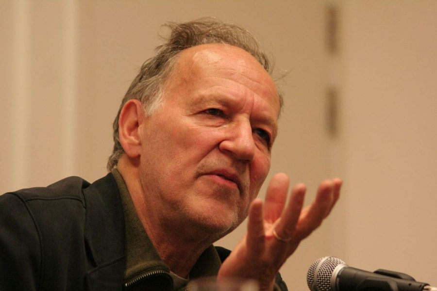 """If Werner Herzog Reviewed Trader Joe's on Yelp: """"Madness Reigns. The First Challenge Your Soul Must Endure Is the Parking Lot"""""""