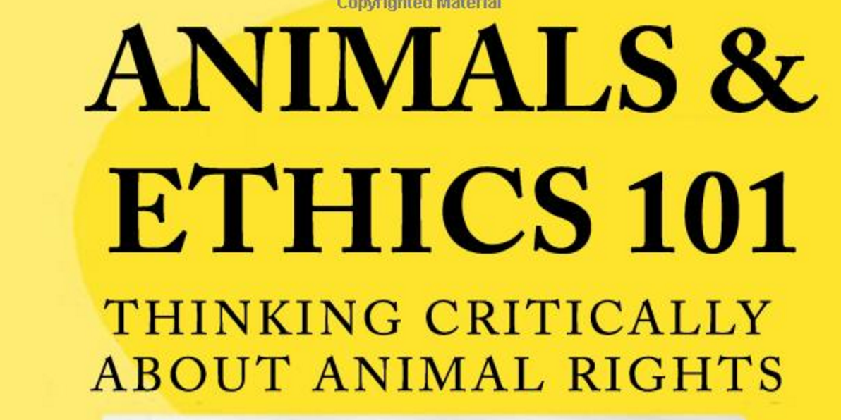 Ethics 101: The Difference Between Ethics and Morals