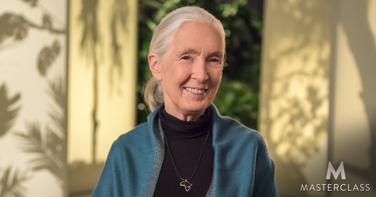 Dr. Jane Goodall Will Teach an Online Course About Conserving Our Environment