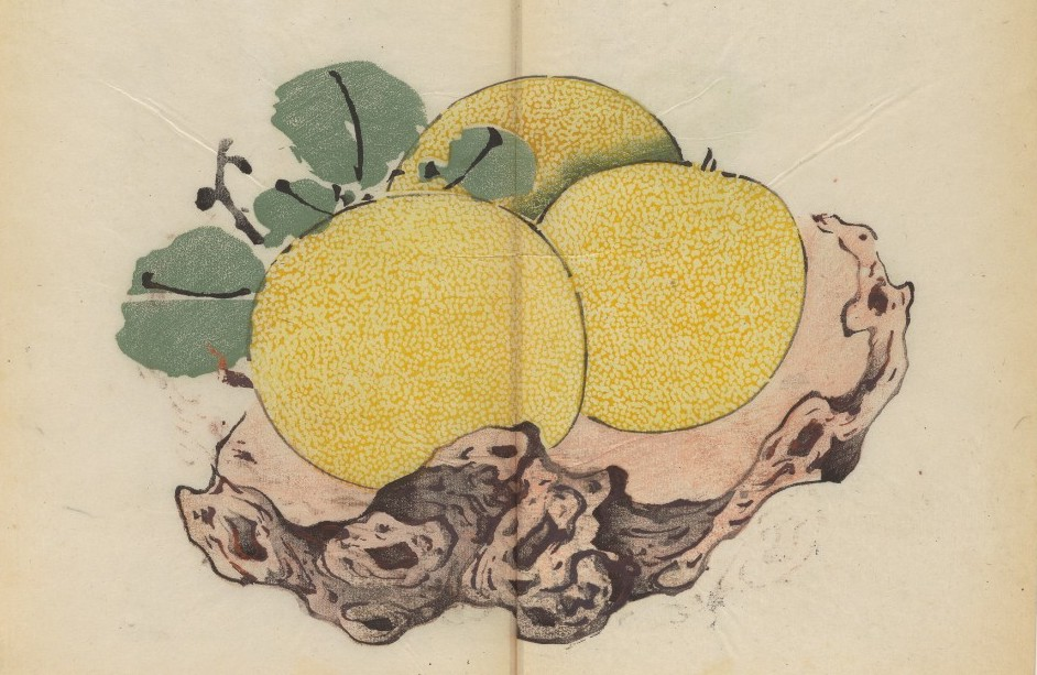 The World's Oldest Multicolor Book, a 1633 Chinese Calligraphy & Painting Manual, Now Digitized and Put Online Artes & contextos Oldest Color book 8