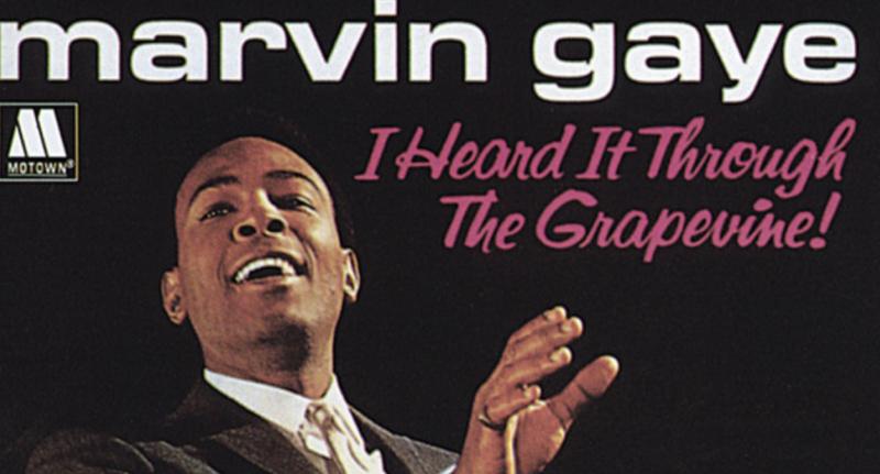 Marvin gaye sexual healing acapella zippy