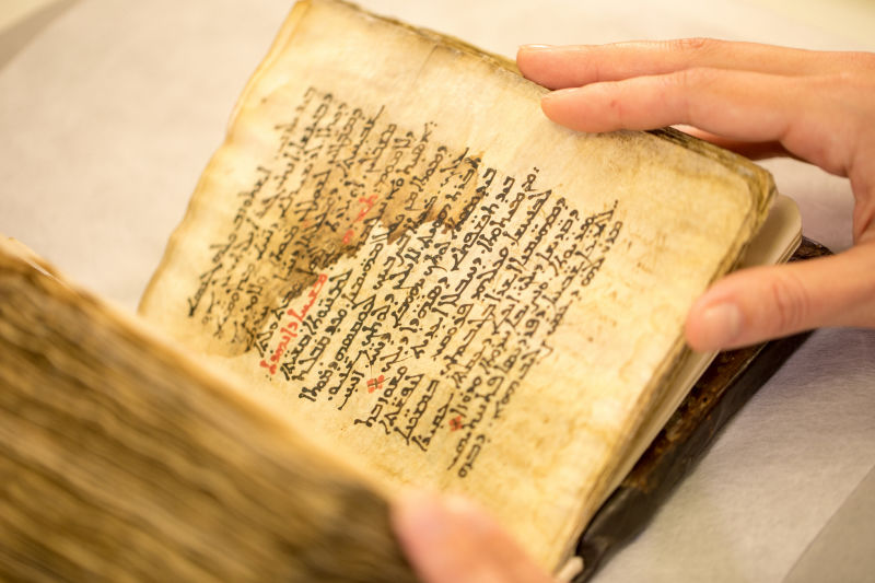 Hidden Ancient Greek Medical Text Read for the First Time in