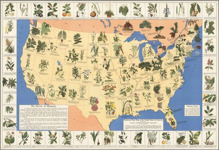 The Illustrated Medicinal Plant Map of the United States of ...