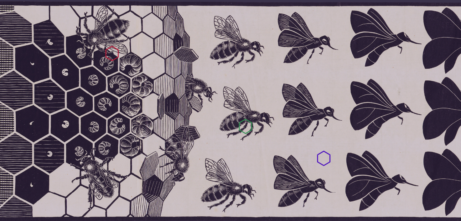 a0c3e8f5a Escher drew attention both to the natural world's variety and its genius  for repeated patterns. But the movement from one animal to the next has  nothing to ...