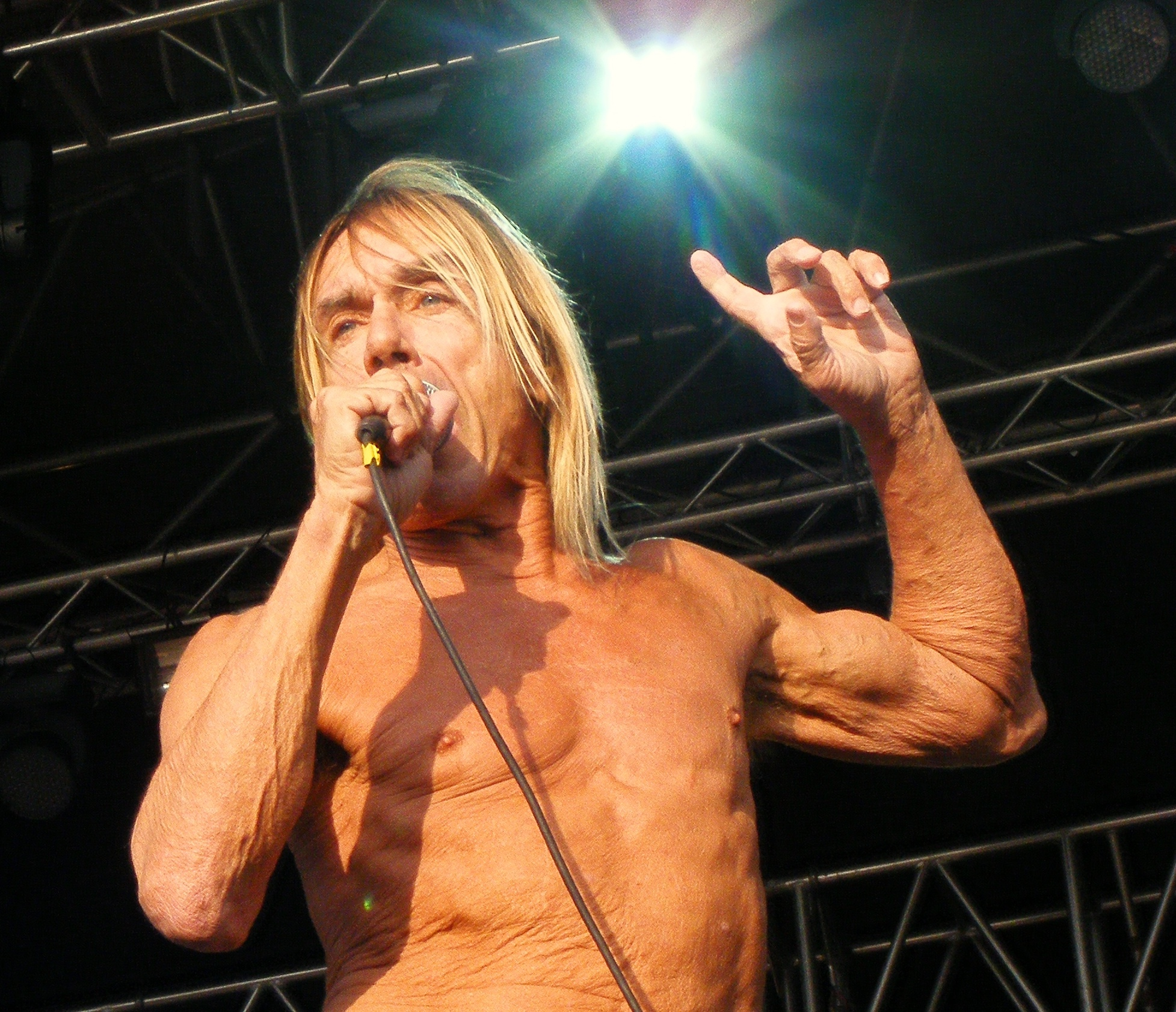 Iggy Pop's Totally Bonkers Contract Rider for Concerts