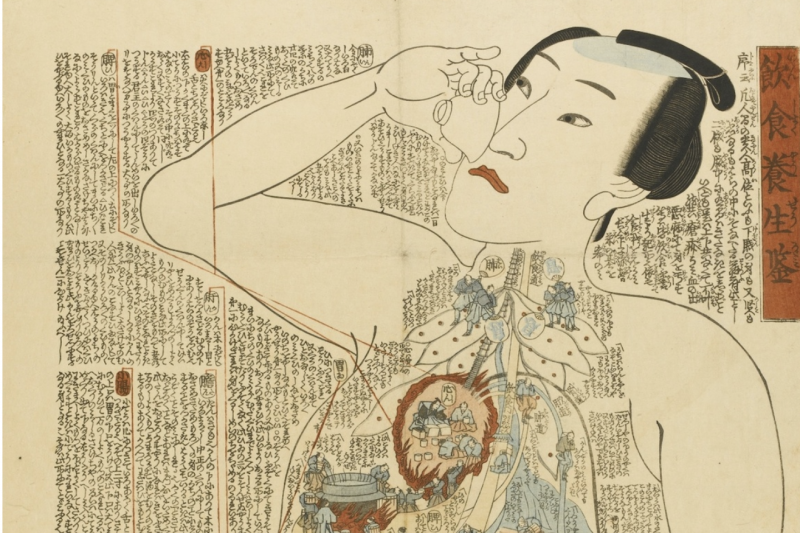 19th Century Japanese Woodblock Prints Creatively Illustrate the Inner Workings of the Human Body