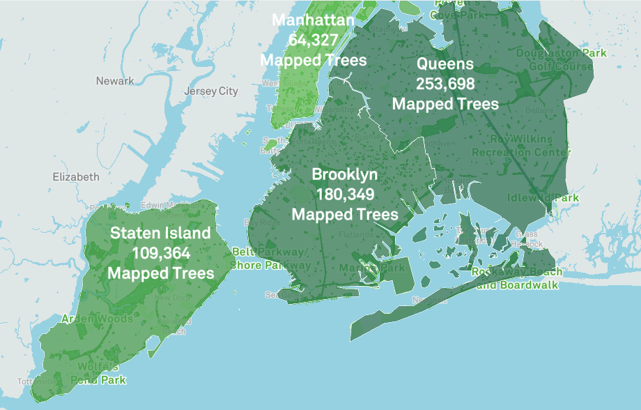 Behold The New York City Street Tree Map An Interactive Map That Catalogues The 700 000 Trees Shading The Streets Of New York City Open Culture