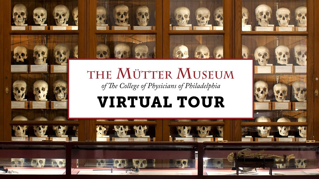 Take a Virtual Tour of the Mütter Museum and Its Many Anatomically Peculiar Exhibits