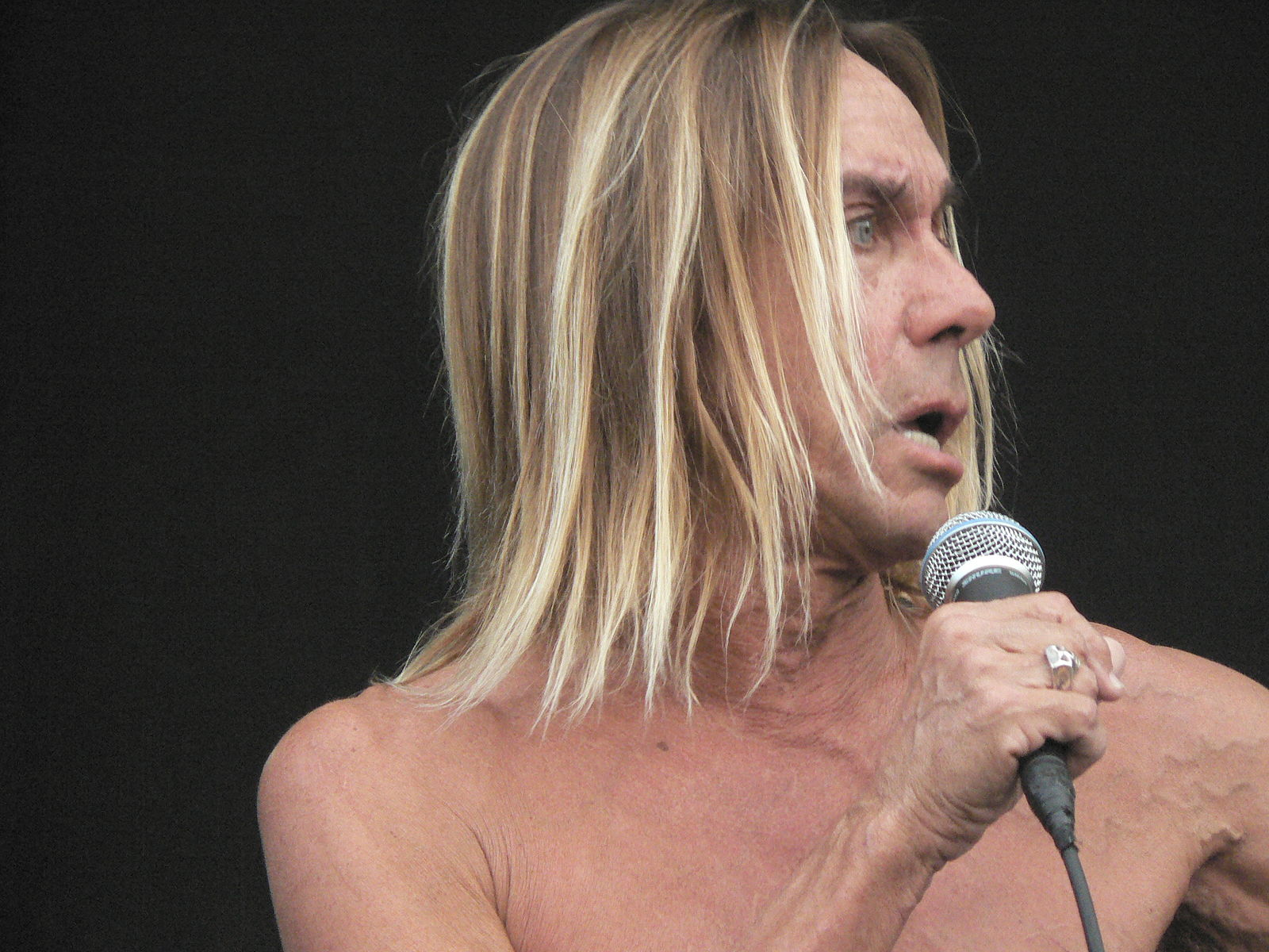 """When Iggy Pop Published an Essay, """"Caesar Lives,"""" in an Academic Journal about His Love for Edward Gibbon's The Decline and Fall of the Roman Empire (1995)"""