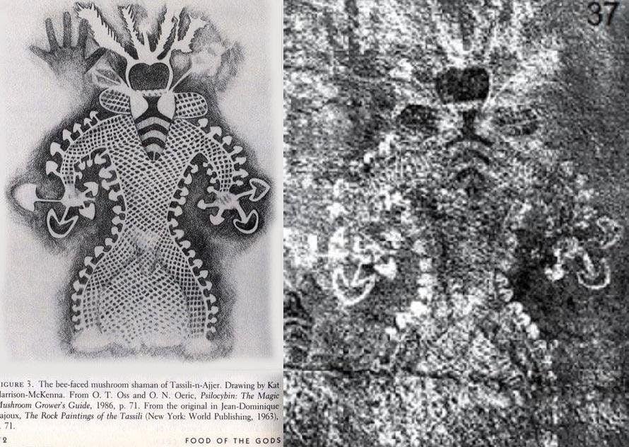 Algerian Cave Paintings Suggest Humans Did Magic Mushrooms 9,000 Years Ago