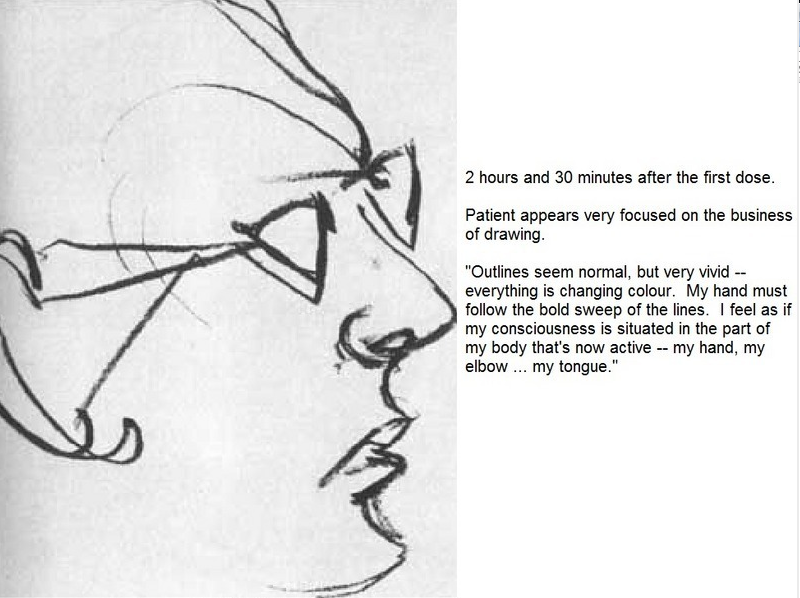 Artist Draws Nine Portraits on LSD During 1950s Research
