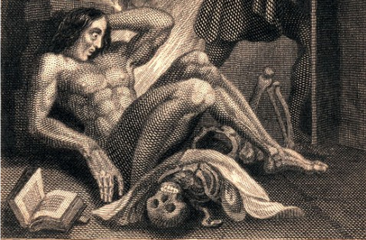 reading journal on mary shellys frankenstein The common reading for the incoming class will be frankenstein by mary shelley  the ethics theme and common reading are used to initiate.