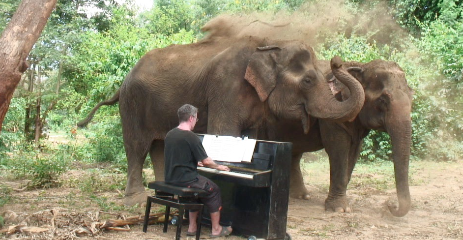 Man Hauls A Piano Up A Mountain In Thailand And Plays