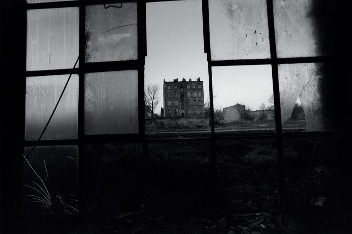 david lynch factory 3