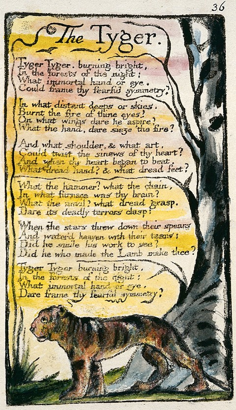 Songs_of_Innocence_and_of_Experience_copy_L_object_36_The_Tyger_1795