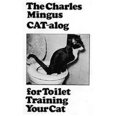 Mingus Cat
