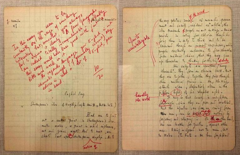 Jacques Derrida Essays (Examples)