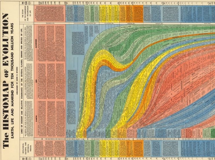 10 Million Years of Evolution Visualized in an Elegant, 5-Foot Long Infographic from 1931