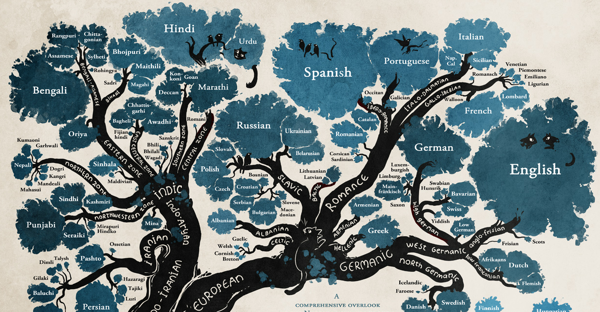 The Tree Of Languages Illustrated In A Big Beautiful Infographic - World of languages infographic