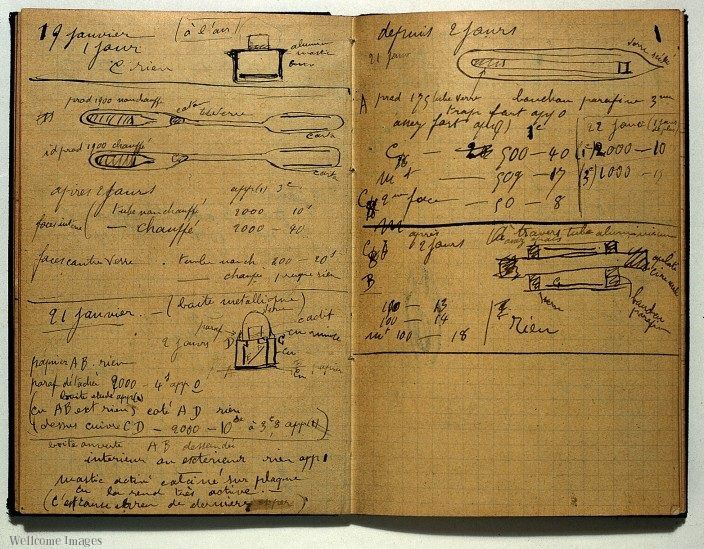 marie curie notebook