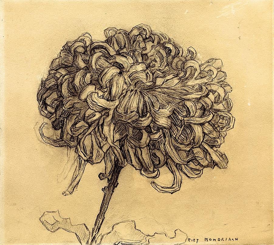 Mondrian Chrysanthemum