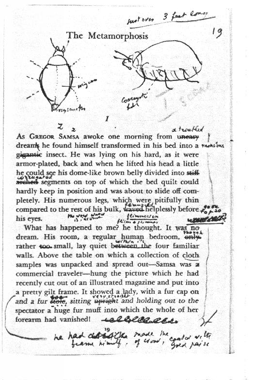 Why did Franz Kafka write The Metamorphosis?