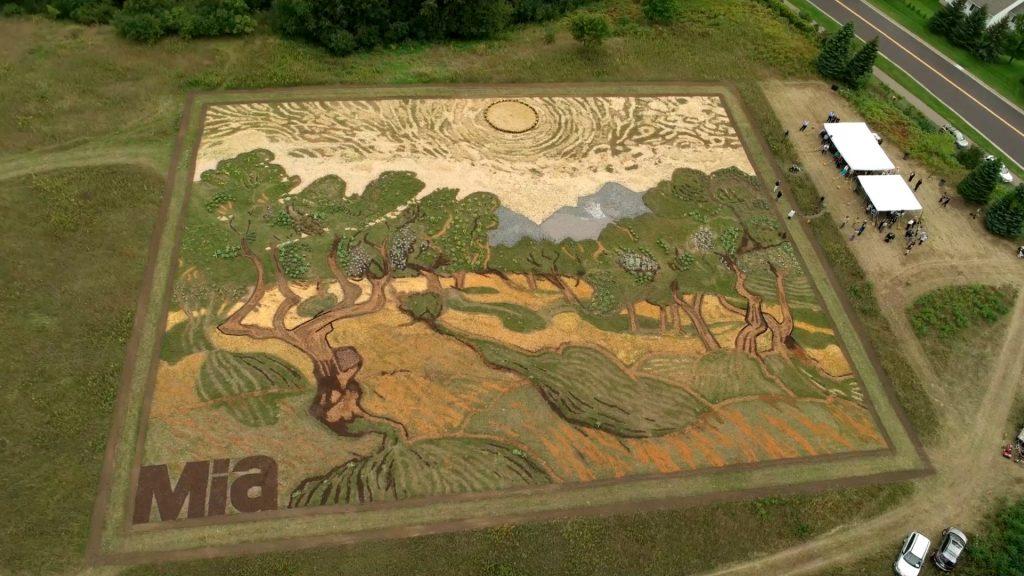 van gogh painting in a field