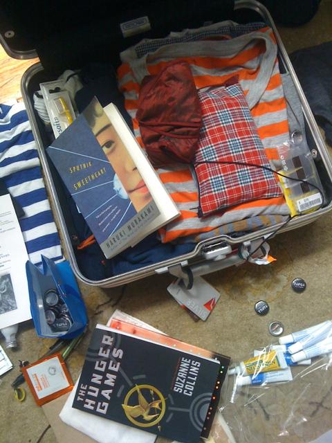 Patti Smith Suitcase