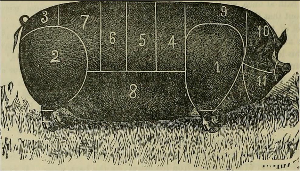 American Farmer Library 1882
